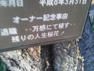 桜オーナー.jpg